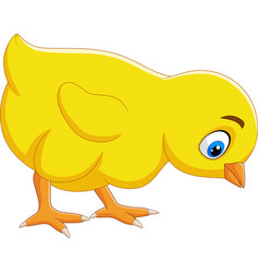cartoon funny baby chick isolated vector image