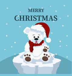 christmas card of beautiful polar bear baby vector image