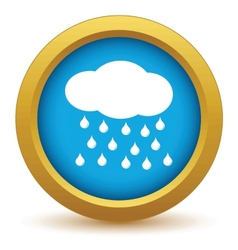 Gold rain icon vector image