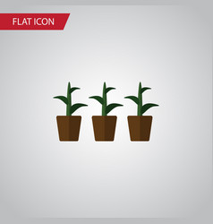 Isolated plant flat icon flowerpot element vector