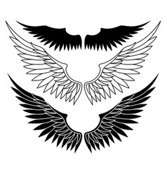 set with black wings vector image
