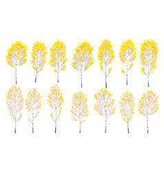 Simple autumn birch trees with yellow leaves vector