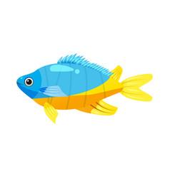 Tropical exotic emperor angel fish bright vector