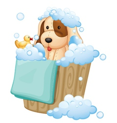 A dog inside a pail full of bubbles vector image vector image