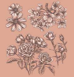 Detailed Sketchbook Hand Drawn Flower Set vector image vector image