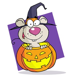 Cartoon Character Halloween Mouse vector image