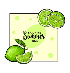 Banner label card design with limes and place vector