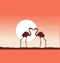 beauty scene flamingo silhouettes collection vector image