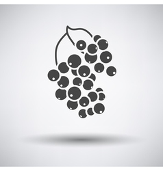 Black currant icon on gray background vector image