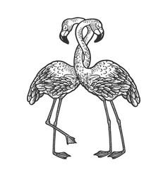 flamingo love couple hug sketch vector image