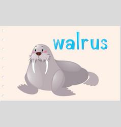 Flashcard animal with walrus vector