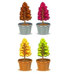 Four pots of plants vector image