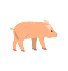 Little funny pig side view cartoon vector