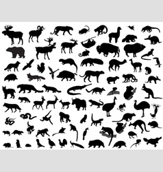 silhouettes animals vector image