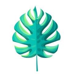 Monstera tropical leaf plant vector