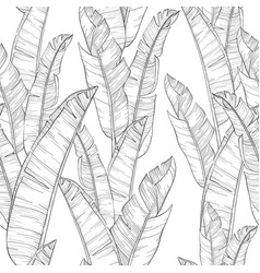 seamless pattern with palm banana leaf and plants vector image
