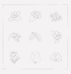 set of flora icons line style symbols with jasmine vector image