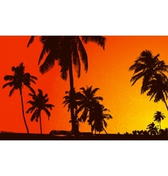Sunset View with Plam Tree vector image