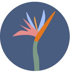 icon of colorful strelizia vector image