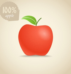 Cute fresh red apple vector image vector image