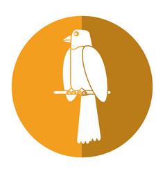 parrot bird animal icon shadow vector image