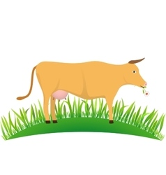 cow on the lawn vector image vector image