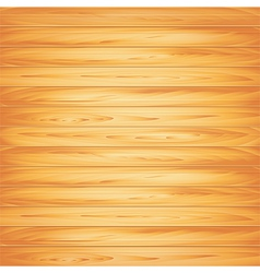 wood texture light vector image