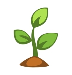 Young green plant sprout vector image