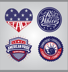 american badge collections vector image