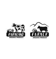 cow in black color with text vector image