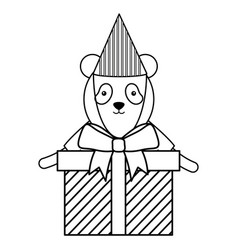 cute bear panda with gifts boxes in birthday party vector image