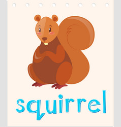 flashcard with word squirrel vector image