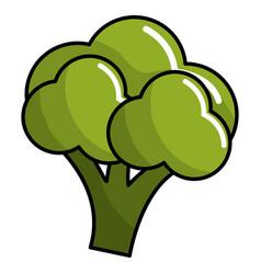 Healthy broccoli vegetable icon vector