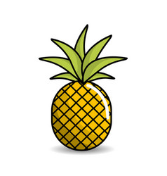 Pineapple fruit icon stock vector