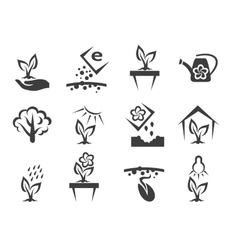 Plant and sprout growing icons set vector image
