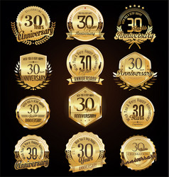 retro vintage anniversary golden badges and vector image