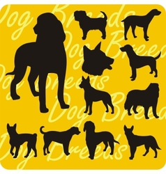 Silhouettes of Dogs - set vector image