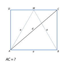 Task of finding a diagonal rectangle abcd vector