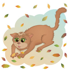aut cat vector image vector image