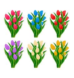 spring blooming tulip flower set vector image vector image