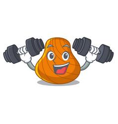 Fitness hard shell character cartoon vector