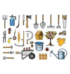set gardening tools or items hose reel fork vector image