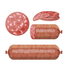 Slices of salami sausage isolated on white vector