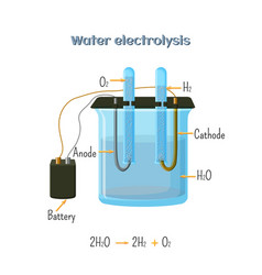 water electrolysis diagram vector image