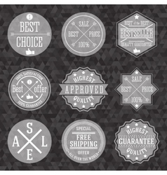 Collection of hipster vintage business labels with vector image vector image