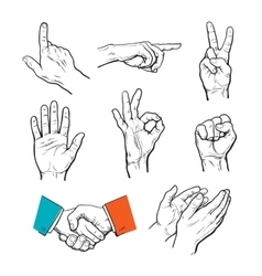 Drawn hands A set of hands and fingers vector image