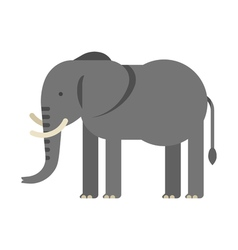 flat style of elephant vector image vector image