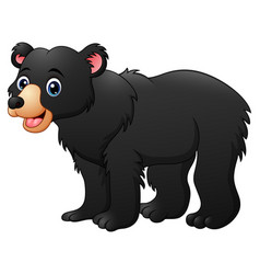 honey bear cartoon vector image