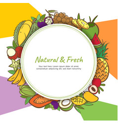 tropical fruits cute banner background template vector image