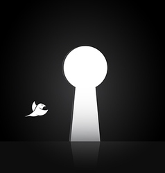 Images of birds that are flying out the door vector